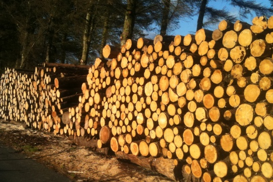 Logs much? Fife Firewood welcomes your custom